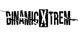 pictogramas web dinamic inicio-06